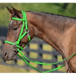 LIME GREEN Quick Change HALTER BRIDLE with Snap on Browband made from BETA BIOTHANE