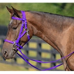 PURPLE Quick Change HALTER BRIDLE with Snap on Browband made from BETA BIOTHANE