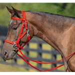 RED Quick Change HALTER BRIDLE with Snap on Browband made from BETA BIOTHANE