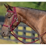 WINE Quick Change HALTER BRIDLE with Snap on Browband made from BETA BIOTHANE