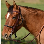 BROWN Snap on Browband WESTERN BRIDLE made from BETA BIOTHANE