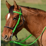 LIME GREEN Snap on Browband WESTERN BRIDLE made from BETA BIOTHANE