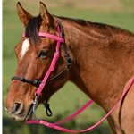 PINK Snap on Browband WESTERN BRIDLE made from BETA BIOTHANE