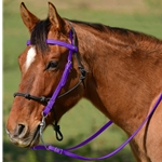 PURPLE Snap on Browband WESTERN BRIDLE made from BETA BIOTHANE