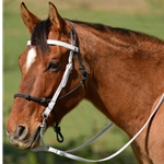 WHITE Snap on Browband WESTERN BRIDLE made from BETA BIOTHANE