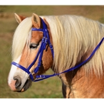 DARK BLUE ENGLISH HUNT BRIDLE Made from Beta Biothane