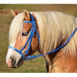 LIGHT BLUE ENGLISH HUNT BRIDLE Made from Beta Biothane