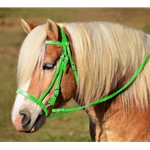 LIME GREEN ENGLISH HUNT BRIDLE Made from Beta Biothane