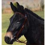 BROWN MULE BRIDLE made from BETA BIOTHANE