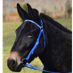 LIGHT BLUE MULE BRIDLE made from BETA BIOTHANE