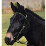 HUNTER GREEN MULE BRIDLE made from BETA BIOTHANE