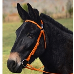 ORANGE MULE BRIDLE made from BETA BIOTHANE