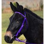 PURPLE MULE BRIDLE made from BETA BIOTHANE