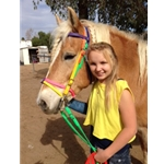 Rainbow ENGLISH BRIDLE with CAVESSON made from BETA BIOTHANE (5 Colors Mix N Match)