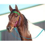 Rainbow WESTERN BRIDLE made from BETA BIOTHANE (5 Colors Mix N Match)