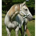 White Foal Size Halter and Lead Made From Beta Biothane