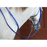 brown RIDING REINS (Solid Colored) made from BETA BIOTHANE