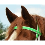 limegreen REGULAR BROWBAND made from BETA BIOTHANE