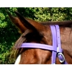 purple REGULAR BROWBAND made from BETA BIOTHANE