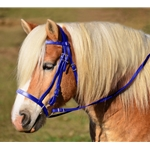 Blue Hunt Bridle With Matching Breastcollar (Draft Size) **Discount Tack**
