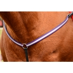 Sidepull Bitless Bridle in Wine  (Arab Size)**Discount Tack**
