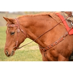 Driving Lines in Black Beta Biothane (11 ft per side)**Discount Tack**