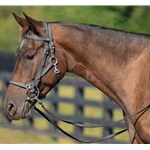 COB SIZE Quick Change Halter Bridle made from BETA BIOTHANE