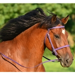 purple ENGLISH CONVERT-A-BRIDLE made from BETA BIOTHANE (Solid Colored)