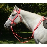 pink ENGLISH CONVERT-A-BRIDLE made from BETA BIOTHANE (Solid Colored)