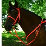 orange ENGLISH CONVERT-A-BRIDLE made from BETA BIOTHANE (Solid Colored)