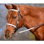 2-in-1 Bitless Headstall in Black (Horse Size) **Discount Tack**