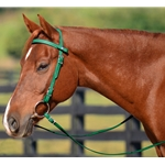 Western Headstall in Hunter Green Beta Biothane (Horse Size) **Discount Tack**