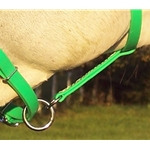 limegreen LEADLINE ATTACHMENT made from BETA BIOTHANE