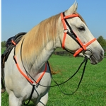 Quick Change HALTER BRIDLE with Snap On Browband made from BETA BIOTHANE (Mix N Match)