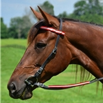 red Quick Change HALTER BRIDLE with Snap on Browband made with REFLECTIVE DAY GLO Biothane