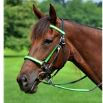 limegreendayglooverlay Traditional HALTER BRIDLE made with REFLECTIVE DAY GLO Biothane