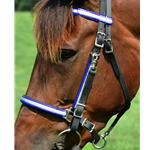 bluedayglooverlay Traditional HALTER BRIDLE made with REFLECTIVE DAY GLO Biothane