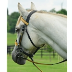 yellowdayglooverlay Traditional HALTER BRIDLE made with REFLECTIVE DAY GLO Biothane