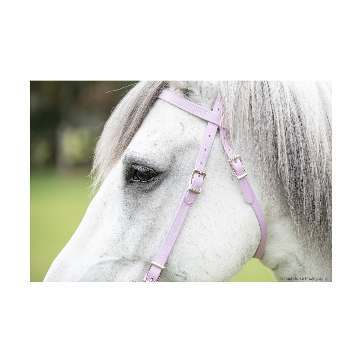 Western Bridle Made From Beta Biothane Two Horse Tack