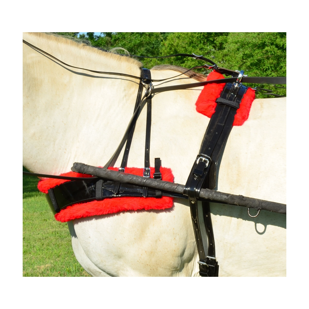 Two Horse Tack - BIOTHANE HARNESS