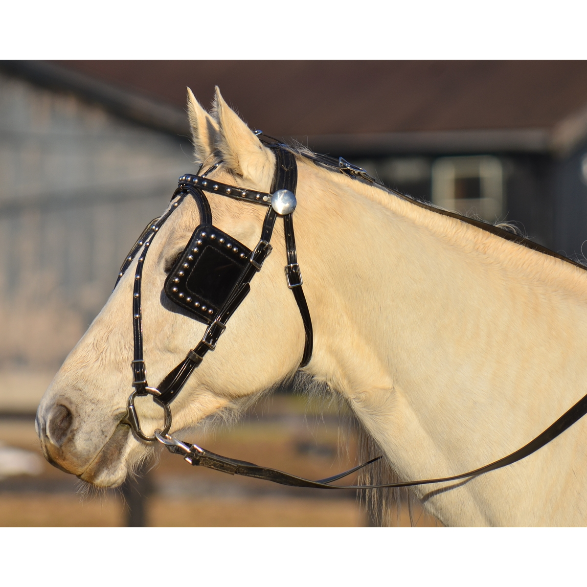 Biothane 20 Driving Lines Single Horse 5//8 Inch Buckle Brown