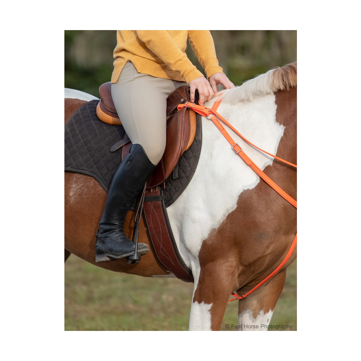 English Breast Collar Horse Bridles For Sale Two Horse Tack