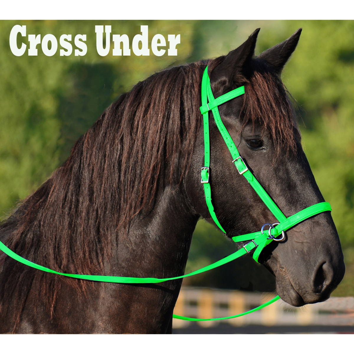 Lime Green 2 In 1 Bitless Bridle Made From Beta Biothane Two Horse Tack