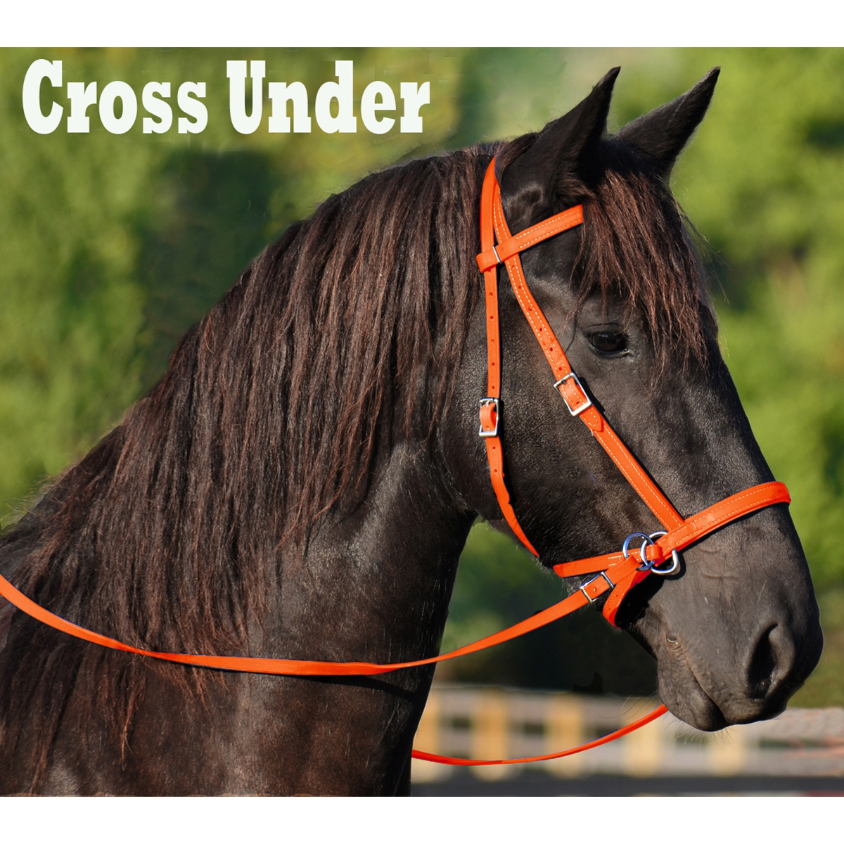 Buy Orange 2 In 1 Bitless Bridle For Horses Online From Two Horse Tack