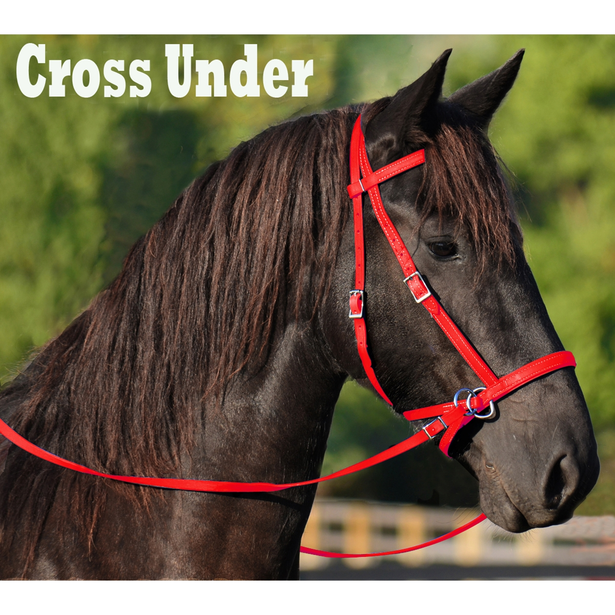 Buy Bitless Bridles For Horses On Two Horse Tack