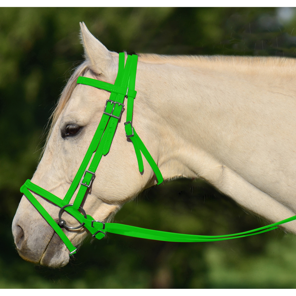 Shop Lime Green English Bridle With Cavesson Online At Two Horse Tack