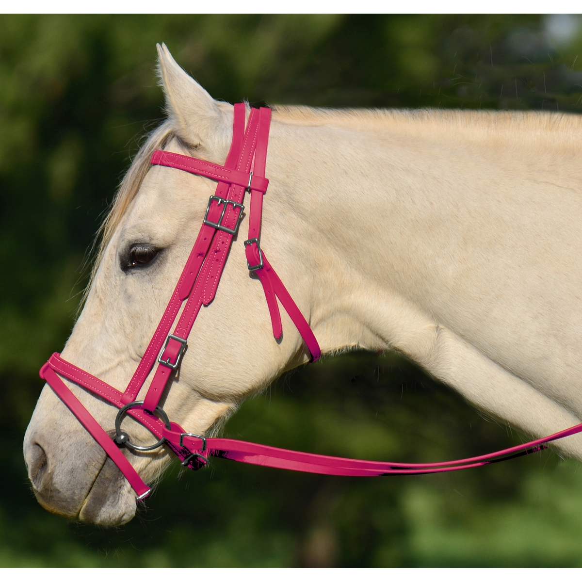Pink English Bridle With Cavesson Two Horse Tack
