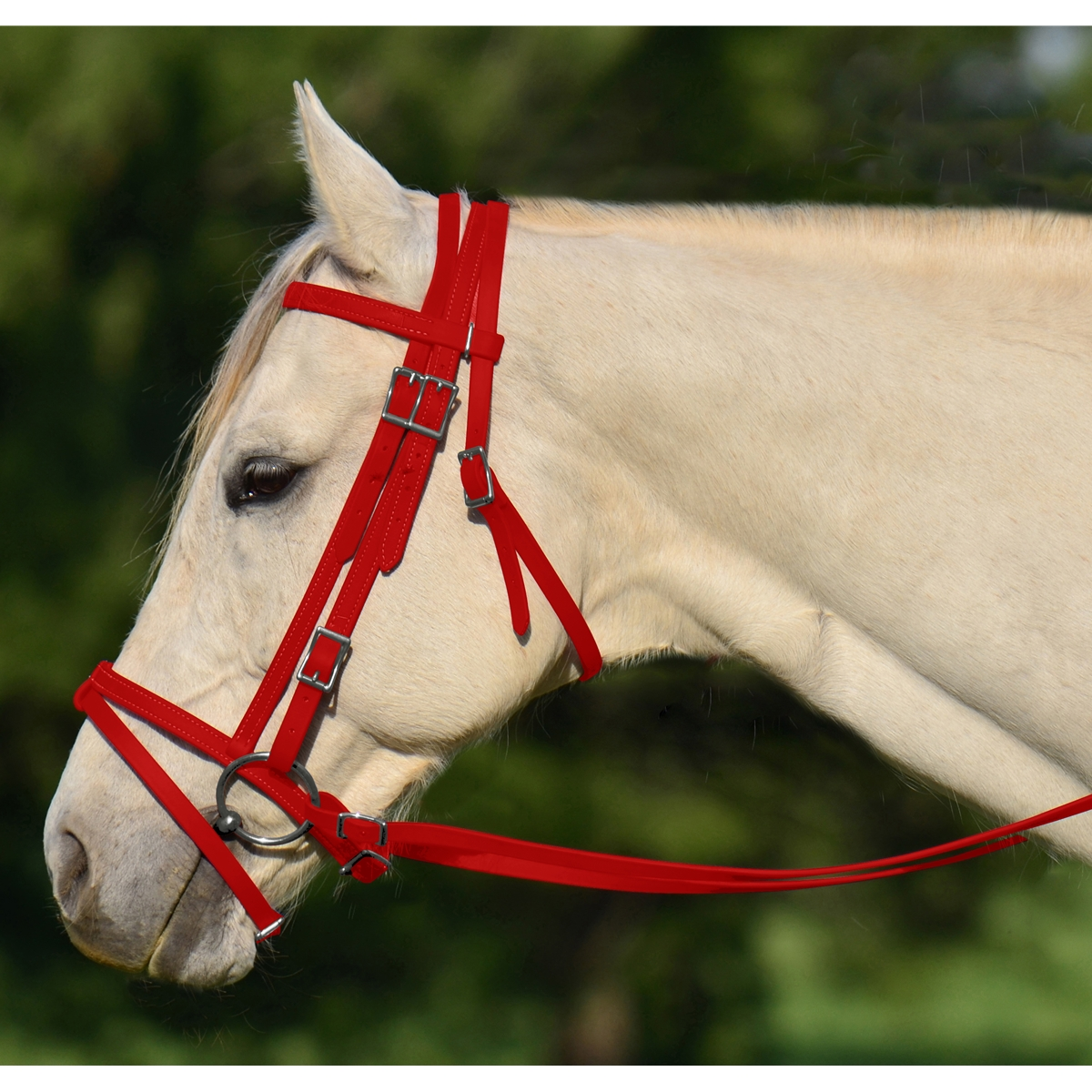 Buy Online Red English Bridle With Cavesson From Two Horse Tack