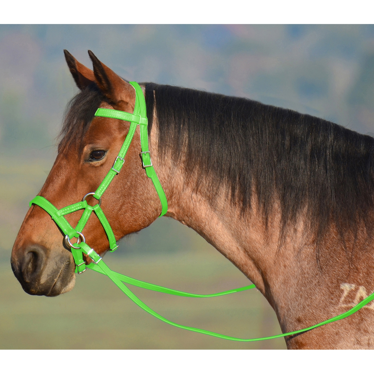 Shop Top Quality Sidepull Bitless Bridles From Two Horse Tack