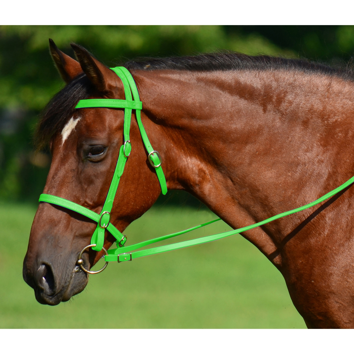 Lime Green English Convert Bridle Two Horse Tack